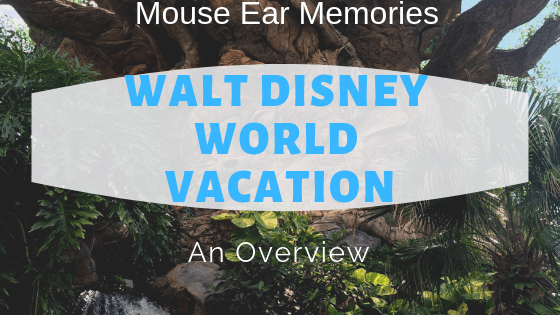 WDW vacation overview