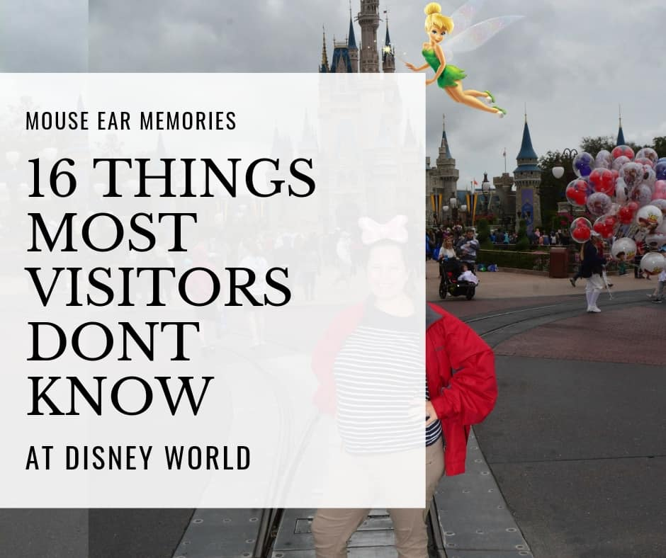 16 things most visitors dont know at disney world