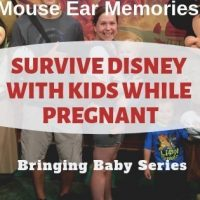 How to Survive Disney with Kids while Pregnant