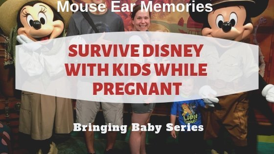 Surviving Disney with Kids while Pregnant