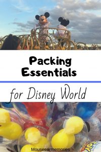 the top 5 packing essentials you need to bring on your Disney Trip.