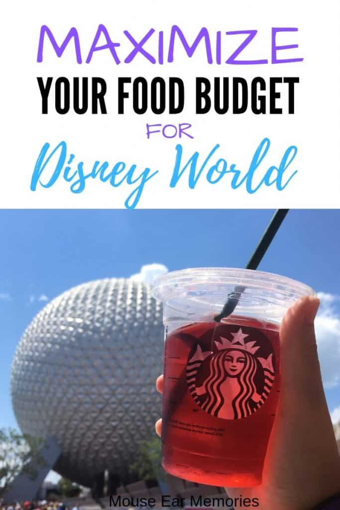 Ultimate Guide: Save Money on Food at Disney World - Mouse Ear Memories